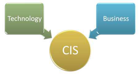 diagram showing technology and business with arrows pointing to CIS