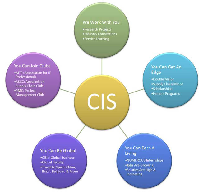 Diagram Describing Advantages Of CIS Degree