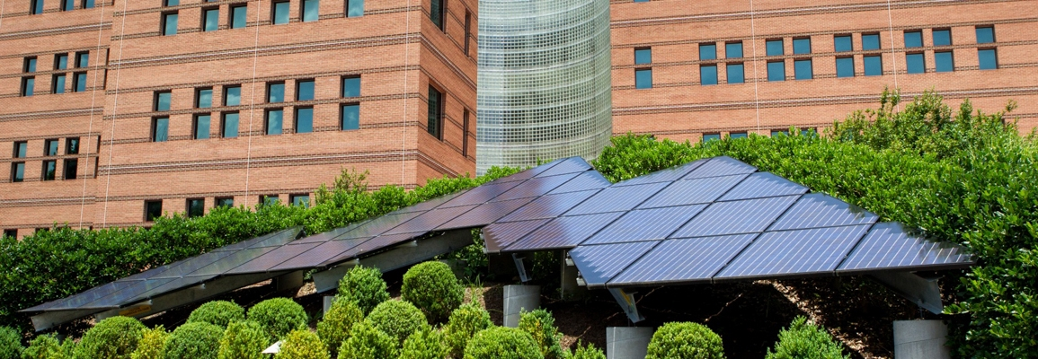 solar panel array in front of Peacock Hall